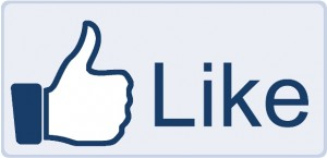 crowdsourcing on facebook, charity is fun, getting likes on facebook