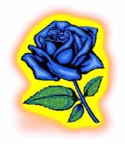 Finding El Dorado Blue Rose