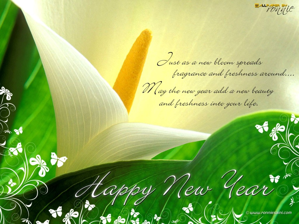 Happy-New-Year-Greeting-Cards-Images3